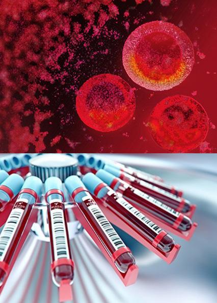 血液由来の再生医療